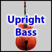 Upright Bass Lessons